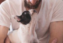 5 voordelen van huisdieren voor het gezin