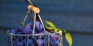 4 Voordelen van druivenpitmeel