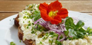Veganistische kaas recept van tofu