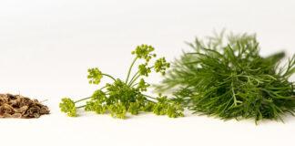 Natuurlijke ingrediënten voor een mooie huid