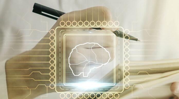 Neuroplasticiteit- waarom dit van belang is om gelukkig succesvol te zijn?